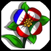 Logo V.Chiucchi 1I
